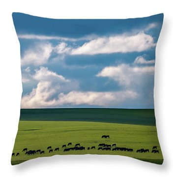 Throw Pillow featuring the photograph Cattle On The Flint Hills Prairie by Jeff Phillippi