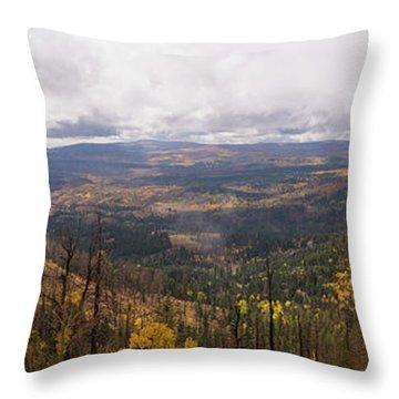Cedar Mountain Top  Throw Pillow