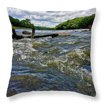 Throw Pillow featuring the photograph Cedar River Iowa by Dan Miller