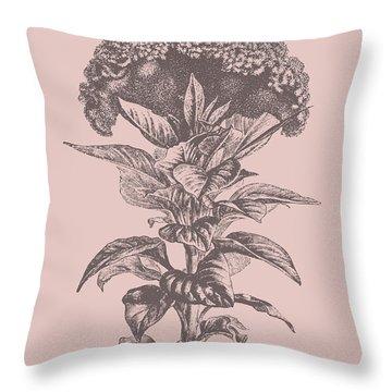 Celosia Blush Pink Flower Throw Pillow