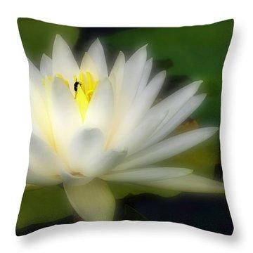 Center Of Attenion Throw Pillow