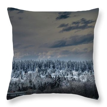 Central Park Winter Throw Pillow