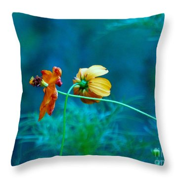 Throw Pillow featuring the photograph Chance Meeting by Rosanne Licciardi
