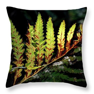 Throw Pillow featuring the photograph Change Of Seasons by Bill Wakeley