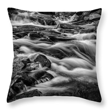 Chaos Of The Melt Throw Pillow
