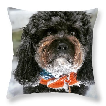 Charlie 11 Throw Pillow