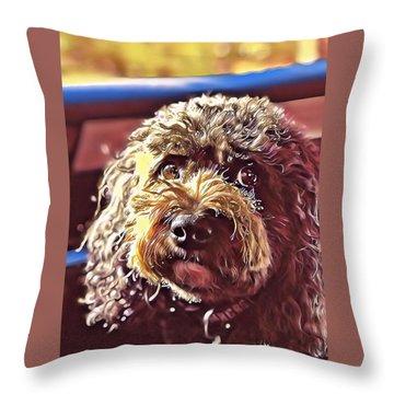 Charlie Sparkles Throw Pillow