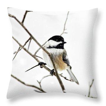 Charming Winter Chickadee Throw Pillow