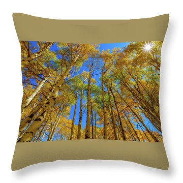 Chasing Colors  Throw Pillow