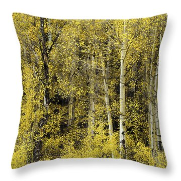 Cheerful Yellow Throw Pillow