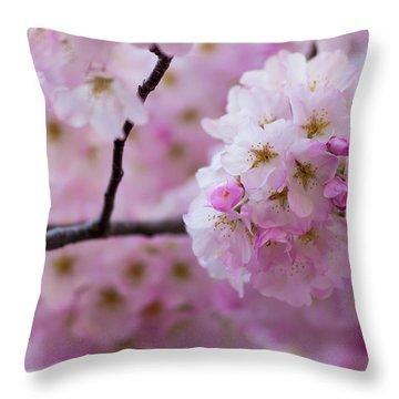 Cherry Blossom 8624 Throw Pillow