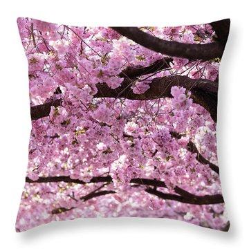 Cherry Blossom Trees Throw Pillow