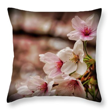 Cherry Blossoms 2019f Throw Pillow