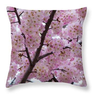 Cherry Blossoms 8611 Throw Pillow