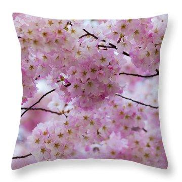 Cherry Blossoms 8625 Throw Pillow