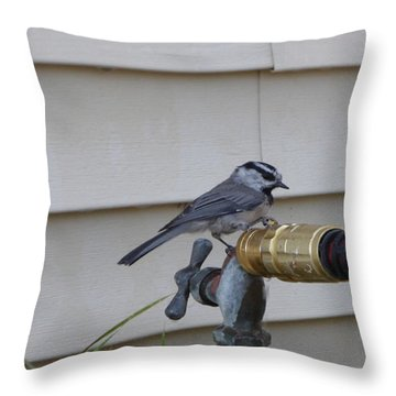 Chickadee On A Spigot Throw Pillow