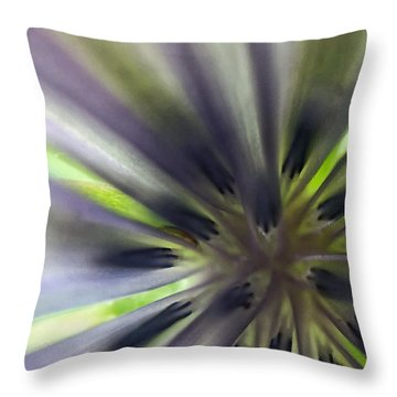 Chicory Flower Closeup Throw Pillow