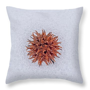 Chilly Sweetgum Throw Pillow