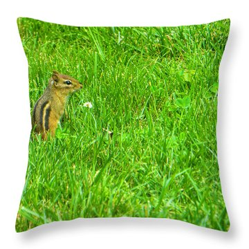Chipmunk And The Flower Throw Pillow