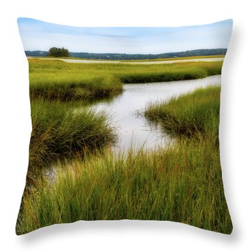 Throw Pillow featuring the photograph Choate Is. Estuary Ipswich Ma. by Michael Hubley