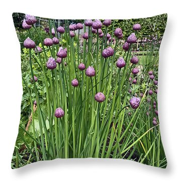 Chorley. Astley Hall. Walled Garden Chive Flowers. Throw Pillow