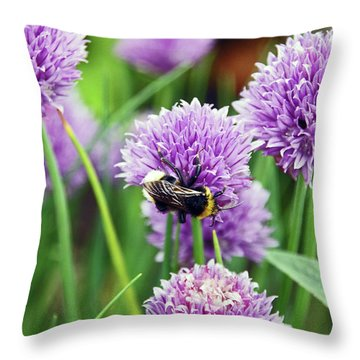 Chorley. Picnic In The Park. Bee In The Chives. Throw Pillow