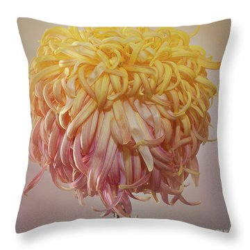 Throw Pillow featuring the photograph Chrysanthemum 'louisiana' by Ann Jacobson