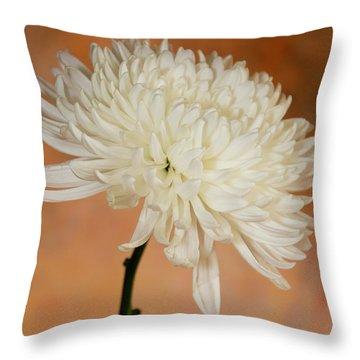Chrysanthemum On Canvas Throw Pillow