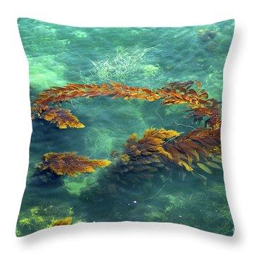 Circle Of Glistening Seaweed Throw Pillow
