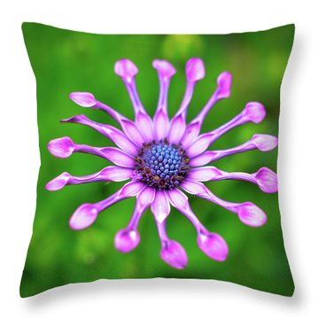 Throw Pillow featuring the photograph Circular by Michelle Wermuth