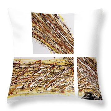 Circumnavigate Throw Pillow