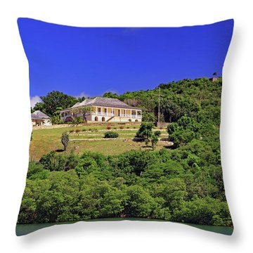 Throw Pillow featuring the photograph Clarence House by Tony Murtagh