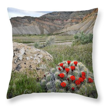 Clarion Cactus Blooms In Book Cliffs Throw Pillow