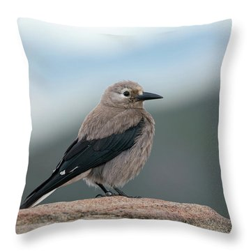 Clarks Nutcracker In The Wild Throw Pillow