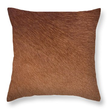 Cowhide Throw Pillows