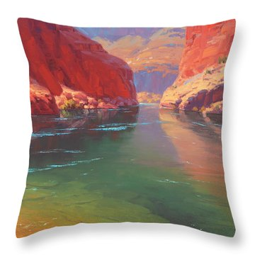 Clear Currents Throw Pillow