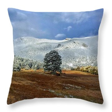 Throw Pillow featuring the photograph Clearing Storm by Dan Miller