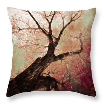 Throw Pillow featuring the photograph Climbing Red Fiery by James BO Insogna