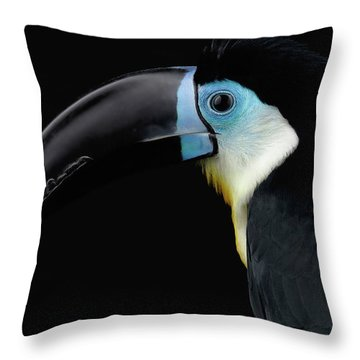 Throw Pillow featuring the photograph Close-up Channel-billed Toucan, Ramphastos Vitellinus, Isolated On Black by Sergey Taran