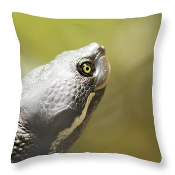 Close Up Of A Turtle. Throw Pillow
