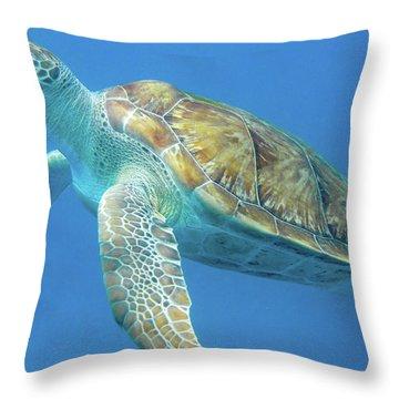 Close Up Sea Turtle Throw Pillow