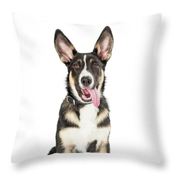 Closeup Cute Puppy Tongue Hanging Out Throw Pillow