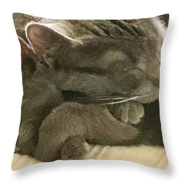 Cloud And Myst Throw Pillow