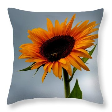 Throw Pillow featuring the photograph Cloudy Sunflower by Candice Trimble