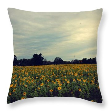 Throw Pillow featuring the photograph Cloudy Sunflowers by Candice Trimble