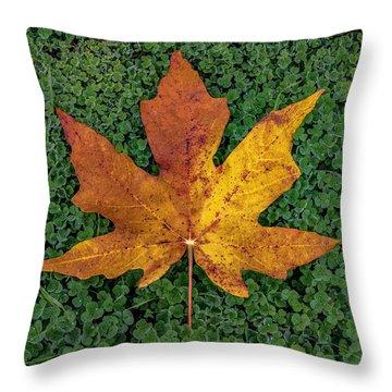 Clover Leaf Autumn Throw Pillow