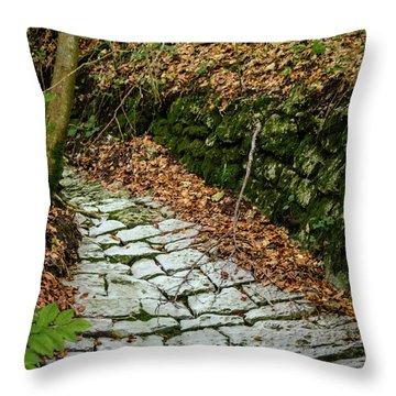 Cobblestone Path Throw Pillow