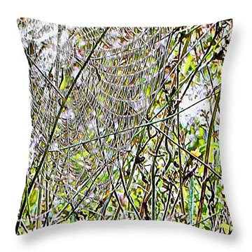 Throw Pillow featuring the photograph Cobweb Study 5 by Dorothy Berry-Lound