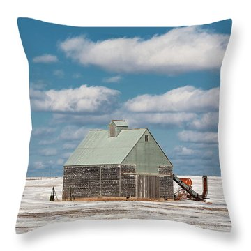 Cold Shed Throw Pillow