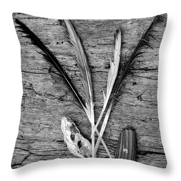 Collections Throw Pillow